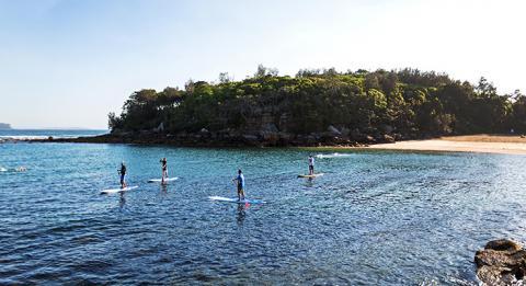 雪莉海灘(Shelly Beach)立式單槳滑浪,曼利(Manly)