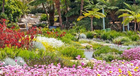 安南山澳洲植物園(The Australian Botanic Garden, Mount Annan)