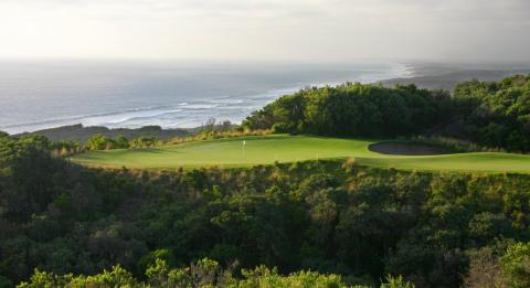 Platinum Pro 高爾夫球之旅