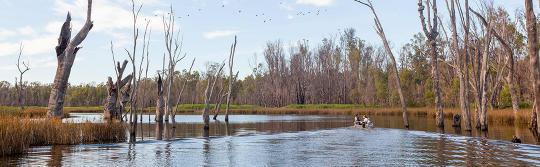 慕任比基河(Murrumbidgee River),納蘭德拉(Narrandera)
