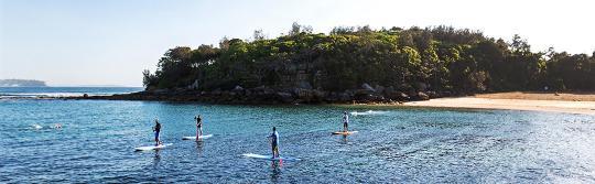 曼利(Manly)雪莉海灘(Shelly Beach)立式單槳滑浪