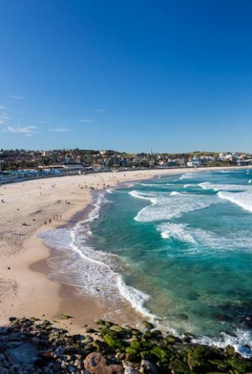 Beach goers arrive at Bondi Beach for a morning swim